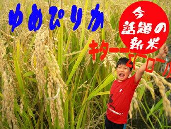 米・雑穀, 白米 5kg