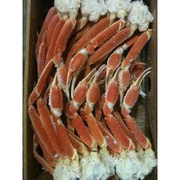 身入抜群 冷凍ボイルずわい蟹 3L(肩)5kg(kg6500円税別)(約16肩)ヤヨイ 業務用
