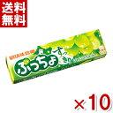 (メール便全国送料無料) 味覚糖 ぷっちょスティック すっきりシャインマスカット 10入 (ポイント消化) (np)
