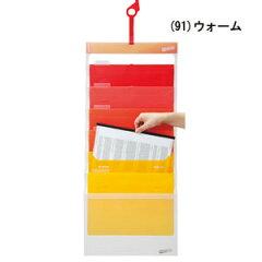 A4書類収納ファイル エセルテ ソーテッド2個組【代引き手数料無料】