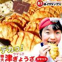 【津ぎょうざ 生特大!90g 6ケ入り 3セット 餃子】 お...