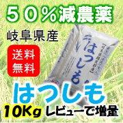 中京関西のブランド米!【はつしも】甘くて大粒お寿司や丼物にもぴったり.10kg【美濃池田産】【白米】
