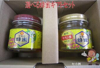 【お歳暮】【ギフト】【送料無料はちみつセット】選べる蜂蜜ギフトセット300g×2【宇和養蜂】【smtb-kd】