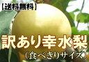 糖分がギュッ!!みずみずしい幸水梨の食べきりサイズ家庭用にピッタリ!【送料無料】訳あり幸...