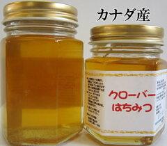【世界の蜂蜜】【蜂蜜】クローバー(カナダ)130g【宇和養蜂】10P21Feb15