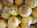 【sale】【送料無料】訳あり/ジュース用美生柑(格外・加工用)約2kg【smtb-KD】