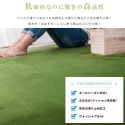 ラグ洗える200X200【ミニマリズム】ラグマット北欧シャギーラグホットカーペット対応無地ウォッシャブル絨毯じゅうたんリビング床暖房対応寝室スマホタブレットマイクロファイバー安い