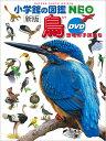 【5/1から最大400円OFFクーポン!】小学館の図鑑NEO 〔新版〕鳥(DVD付き)