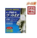 【第2類医薬品】ロートアルガードクールEX 13mL 4987241100194★メール便送料無料