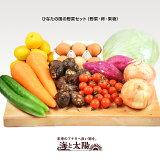 ひなたの国の野菜セット(野菜・卵・果物)