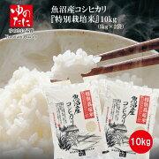 令和元年産魚沼産コシヒカリ「特別栽培米」10kg(5kg×2)新潟米【送料無料】