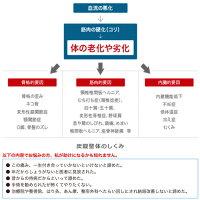 炭酸/スプレー/炭酸スプレー/化粧水/スキンケア/健康器具/マッサージ/血行/血行促進/炭酸/スプレー/炭酸スプレー