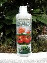 光合成を高める液体肥料ペンタガーデンPRO 350ml