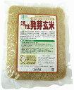 マクロビオティック有機JAS(無農薬・無添加) 活性発芽玄米(小) 500g