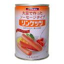 大豆ミート無添加★三育フーズ リンケッツ(大) 400g