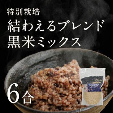 【30年産】【新米】茨城県産 特別栽培玄米3種「 結わえるブレンド黒米ミックス」(6合)
