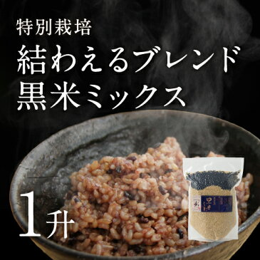 【30年産】【新米】茨城県産 特別栽培玄米3種「 結わえるブレンド黒米ミックス」(1升)