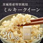 【30年産】【新米】茨城県産 特別栽培玄米「しらさぎミルキークイーン」(20kg)
