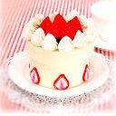 ☆BOX イチゴとブルーベリーのケーキ/SC-8 [フェルトキット]