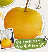 平均糖度13度!甘い果汁がじゅわーっと詰まった有機農法(アルギット農業)で作られた幻の梨