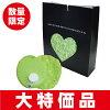 【数量限定】AngeLポリ湯たんぽプチ袋付BOXグリーン0.9L//省エネ/保温