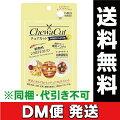 チュアカットレモン45粒/タブレット/ダイエット/シクロデキストリン/乳酸菌/サプリメント
