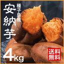 【送料無料】 財宝 焼き芋 安納芋 (冷凍) 4kg (500g×8袋) [鹿児島県産 さつま芋 あまい 人気 スイーツ お歳暮 ギフト]
