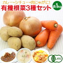 有機根菜3種セット(じゃがいも・にんじん・たまねぎ 各1kg)ジャガイモ 人参 ニンジン 玉ねぎ 玉葱 タマネギ 有機栽培 野菜 詰め合わせ 有機野菜 オーガニック 送料無料