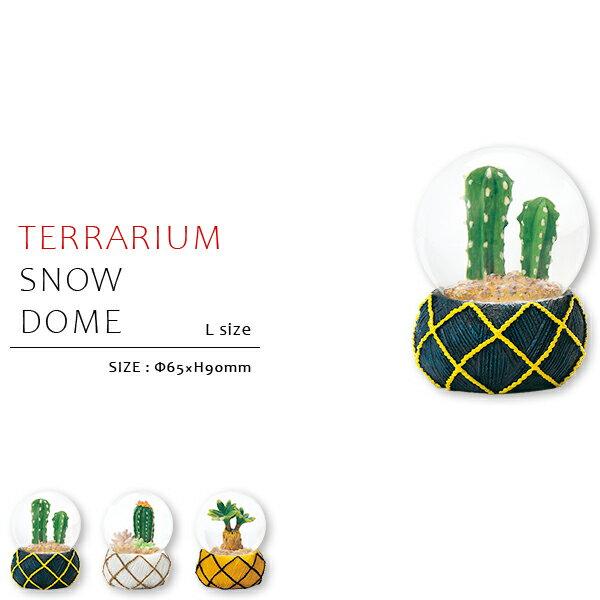 スノードーム/テラリウム/Lサイズ スノードーム テラリウム サボテン カクタス インテリア雑貨
