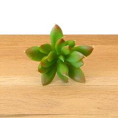 エケベリア クリスマスのフェイク多肉植物[Fタイプ](63450) 多肉植物 造花 フェイクグ…