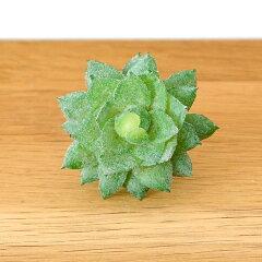 パキベリアのフェイク多肉植物[Gタイプ](63460) 多肉植物 造花 フェイクグリーン フェ…