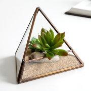 テラリウム ボックス ガラスケース トライアングル ディスプレイ