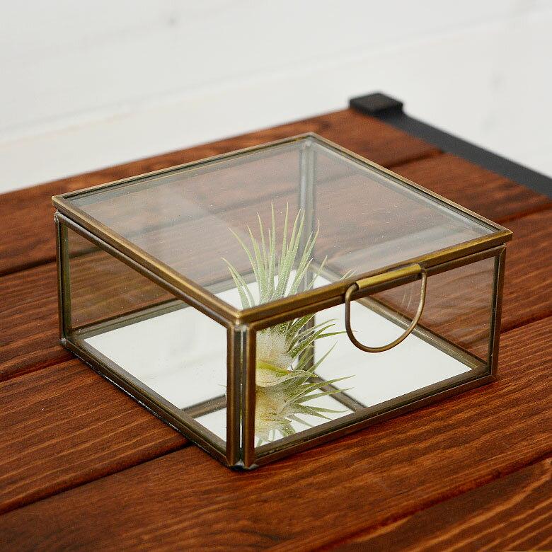 ガラスと真鍮でできた鏡付き収納ケース(S)(63120) 小物入れ ガラスケース ふた付き ガラスボックス おしゃれ ジュエリーボックス アクセサリケース テラリウム 四角 小物収納 かわいい 塩系 男前 インテリア 西海岸