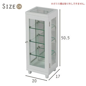 サイズ図:コレクションケース縦型背面ミラー付き