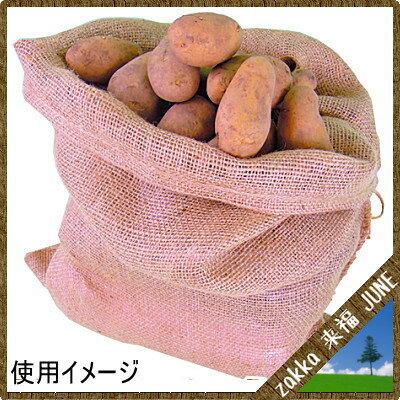 日本マタイ『ドンゴロス麻袋』