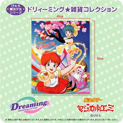☆DZC☆魔法のスター マジカルエミミニポスター