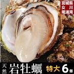 【生食用】天然岩牡蠣