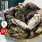 殻付き牡蠣L