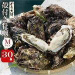 殻付き牡蠣M