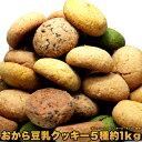 【送料無料】しっとり豆乳おからクッキー 1kg くっきー!訳あり おから豆乳クッキー1kg 5種セット(チョコレート、オレンジ、チーズ、シナモン、抹茶)の商品画像