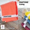 フェイスタオル PANTONE Living パントン リビング タオル 33×80 日本製 今治 おすすめ ギフト ふわふわ 色 おしゃれ かわいい パントーン ループパイル 北欧