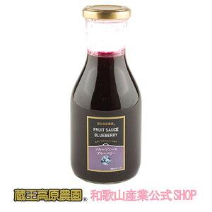 【1本】フルーツソースブルーベリー300g【20%OFF】