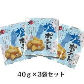 【送料無料(メール便)】東北DC・塩ポテト 40g×3袋