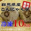 【群馬県産】★手作りこんにゃく用★こんにゃく芋10kg[冷凍]