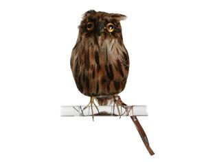 Owl Brown 【S】 フクロウ ブラウン PUEBCO Artificial Birdsプエブコ アーティフィシャルバード109077【あす楽対応_東海】