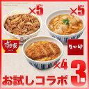 お試しコラボ3種セットすき家牛丼の具5パック×なか卯親子丼の具5パック×カツ丼の具4食冷凍食品 【NeR】