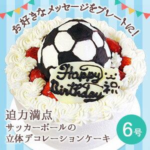 【誕生日ケーキ・バースデーケーキ】サッカーボールの立体 デコレーションケーキ 6号【誕生日 誕生祝い 男の子 サッカー 記念日 キャラクター ケーキ バースデー ショートケーキ】