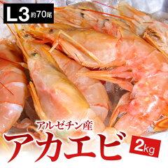 1kgあたりなんと1500円!ぼたん海老に匹敵するうまさ!寿司ねたにも!※赤えび1尾の大きさは約2...