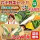 野菜セット 減農薬・農薬不使用 岩手 産直 11〜13品 【送料無料】キャベツ カボチャ …