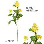 【菜の花A-32256】